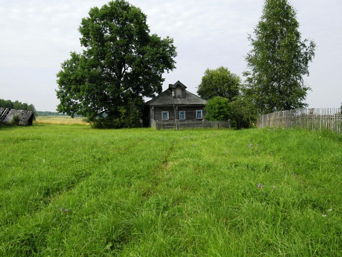 Мой родительский дом в д. Галузино. фото Е.Балашовой