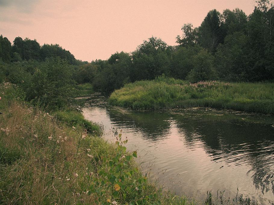 Река Меза , на берегу которой стоит Ильинское. 2011 г.