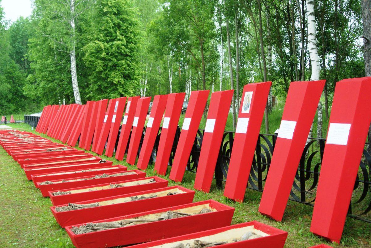 """34 гроба с останками 303 бойцов на мемориале """"Барсуки"""", 21 июня 2016 года. фото Назаренковой Т.Н."""